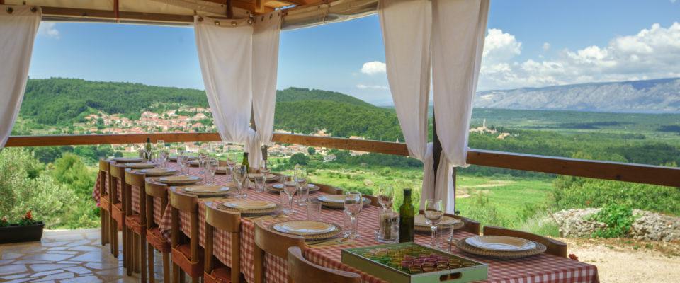 Olive grove lunch Vrisnik Island Hvar
