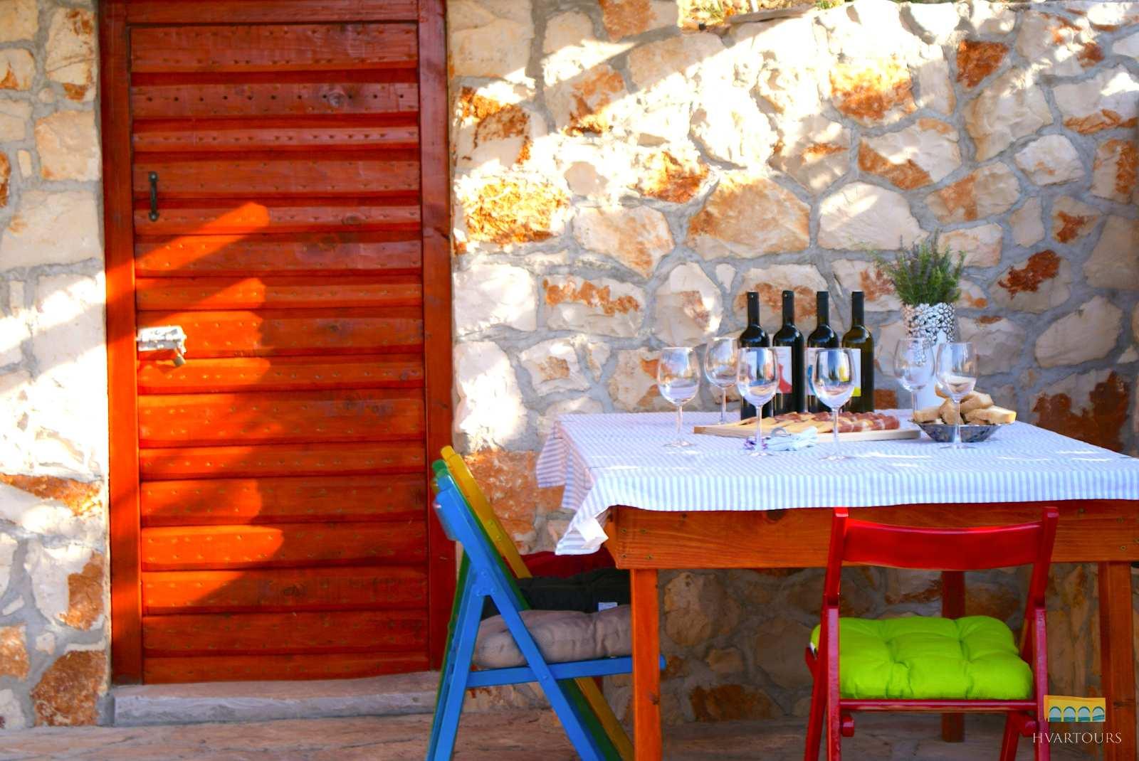 VIneyard wine tasting & swimming